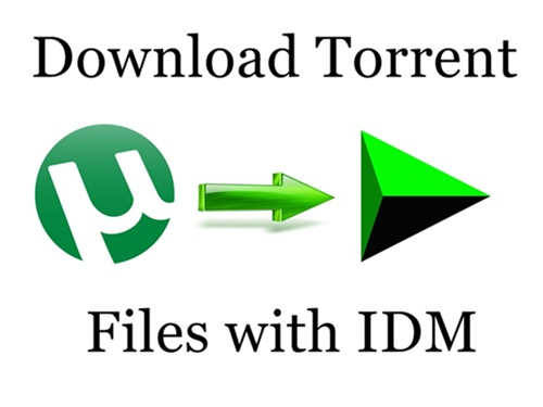 how to convert torrented file to idm free